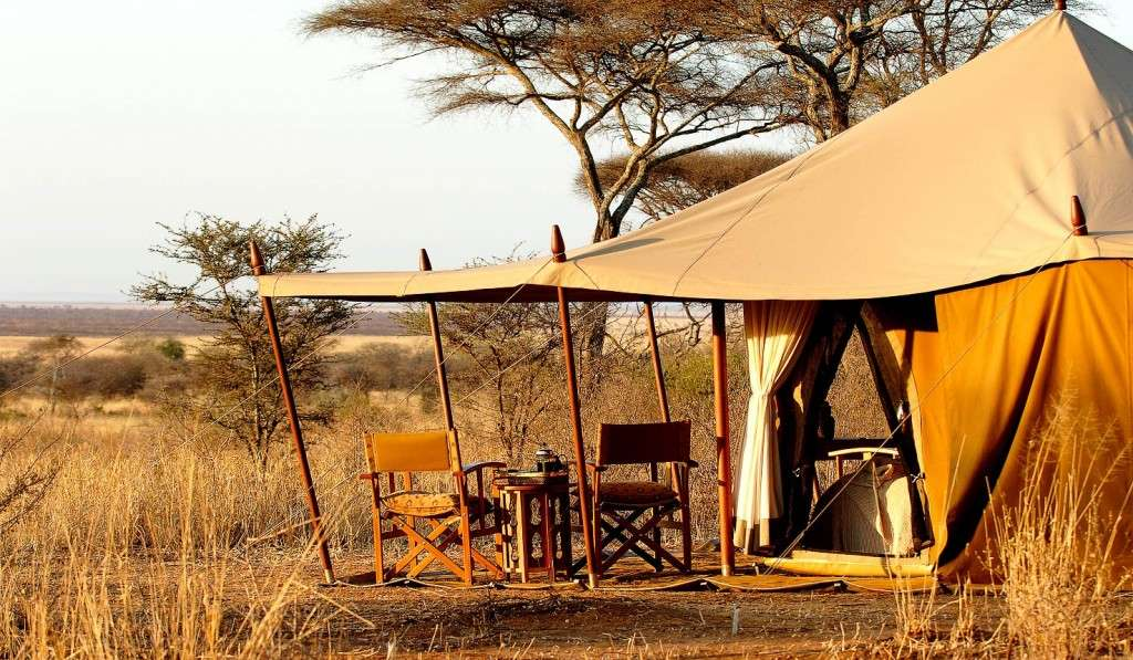 8 Days 7 Nights - Northern Tanzania - Adventure Camping Safari 8 Day(s) Wildlife Experience Zanzibar Tours & Safaris Ltd