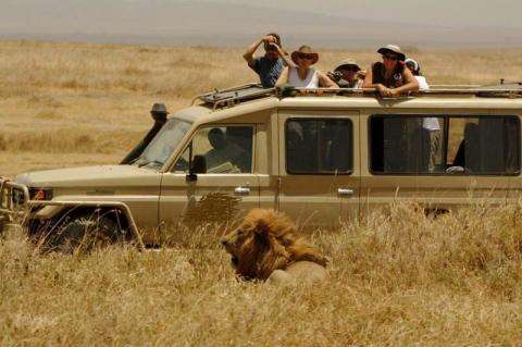 9 Days, 8 Nights - Northern Tanzania - Lodge Safari 9 Day(s) Select Experience Zanzibar Tours & Safaris Ltd