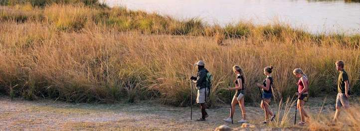 Walking Safari - Ngorongoro Highlands 6 Day(s) Walking Experience Zanzibar Tours & Safaris Ltd