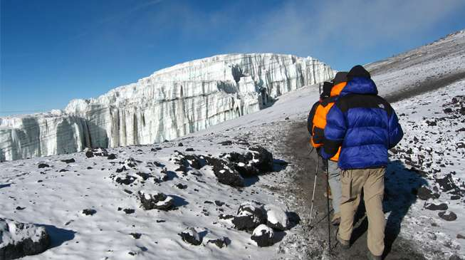 Shira Route 8 Day(s) Kilimanjaro Climbing Experience Zanzibar Tours & Safaris Ltd